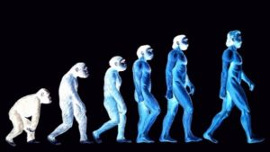 ape to man evolution