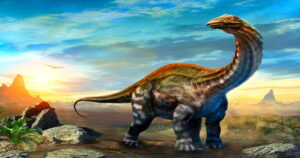 dinosaurs and man and the Bible