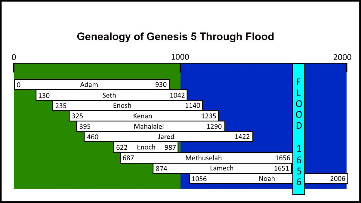 Flood Genealogy